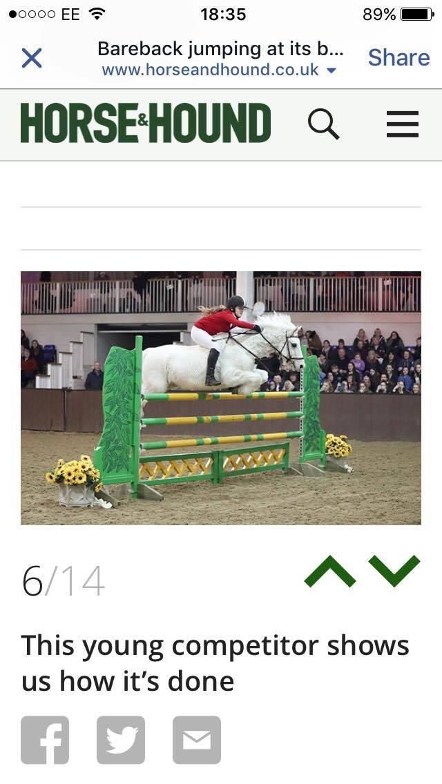 Rocklane Riding Centre Horse Riding Lessons Leighton Buzzard